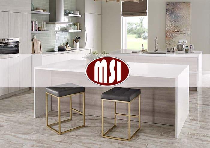 msi-model